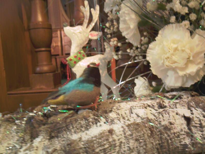 Detail of Bird and Reindeer