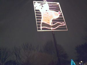 Rudolph lit up at night