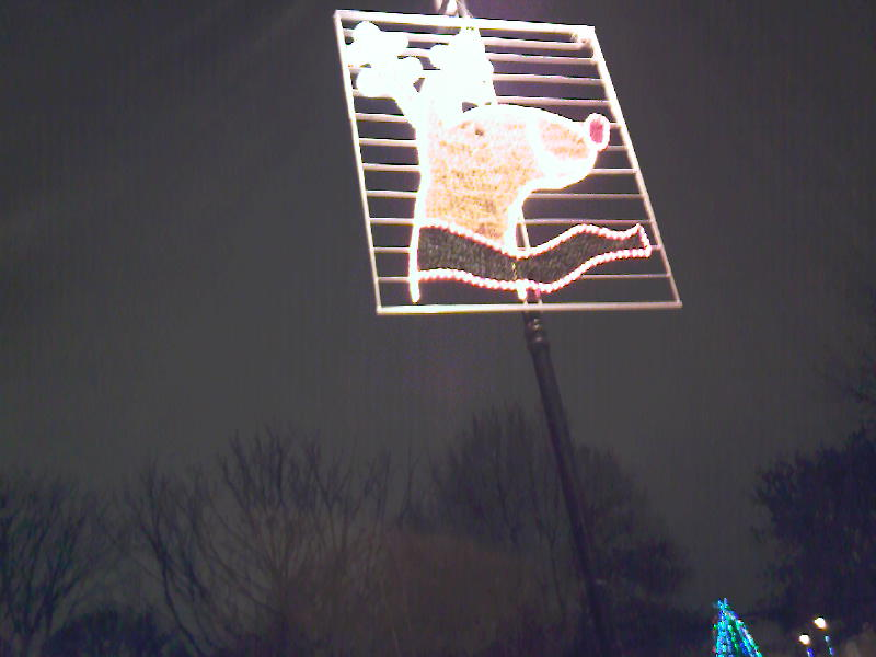 Rudolph lit up at night